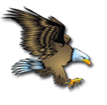 The Eagle Icon represents the High School Mascot.